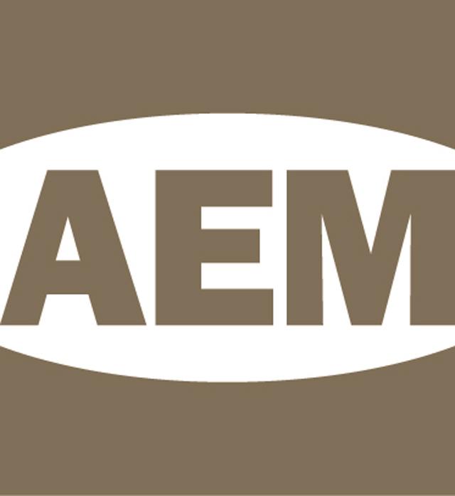 AEM_logo_wo_Grey1