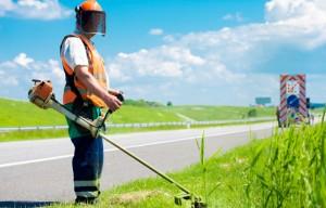Landscape industry urges resumption of processing H-2B Visas