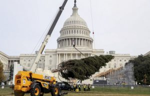Friday Fun: JCB Loadall telehandler Gives a Lift to Capital's Holiday Celebrations