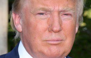 President Trump's Executive Action Will Spur Job Growth, ABC Says