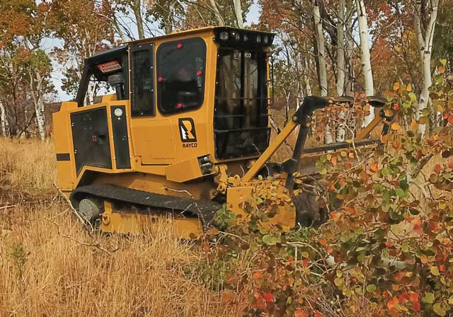 Rayco's C120R Forestry Mulcher