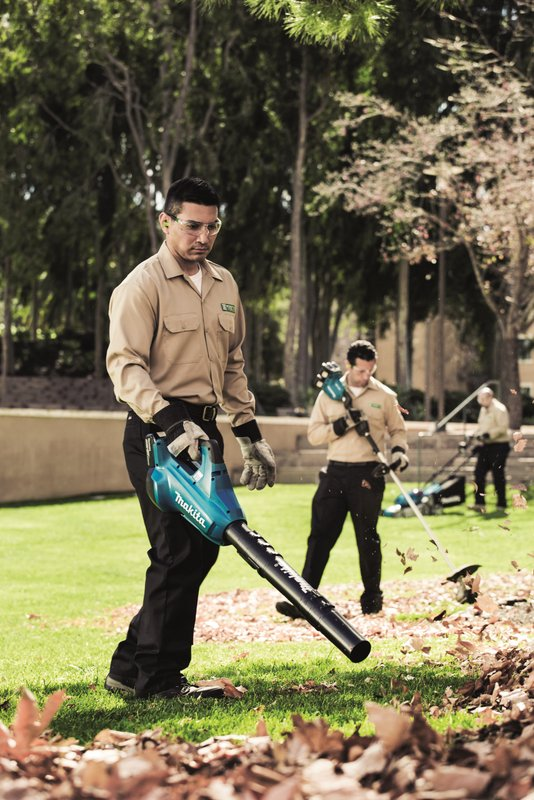 leaf blower landscaper worker RTO 2019 - 9334_CMYK