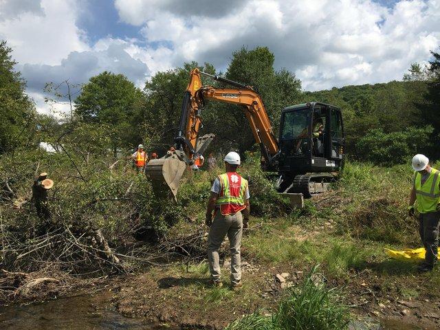 case excavator cutting brush