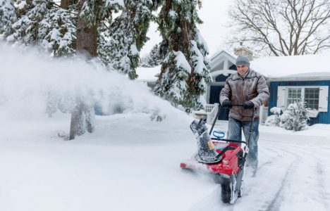 Here Are Some Snow and Ice Tips to Protect Yards and Trees This Winter